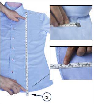 Shirt Lengthimage
